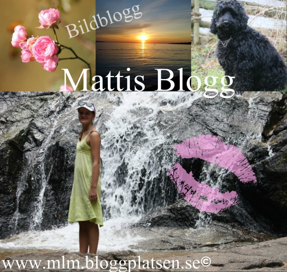 Mattis blogg